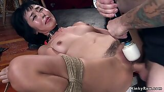 Hairy Asian bdsm anal rough banged
